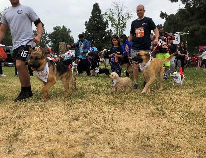 Victory for Victims 5K/10K Walk/Run - Northridge Hospital